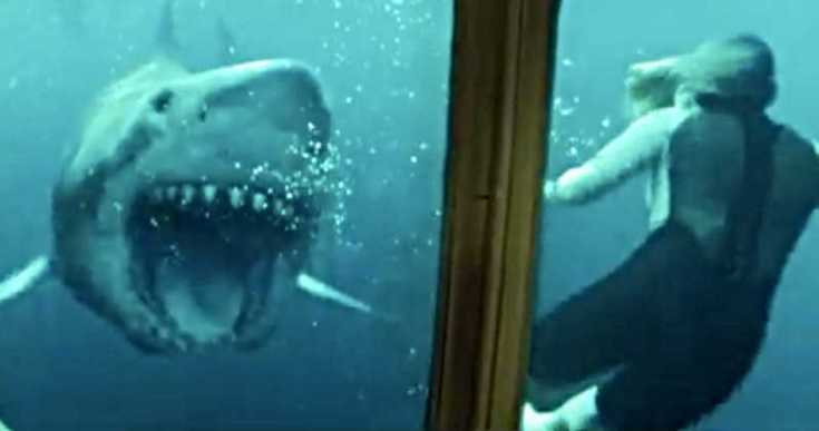 47-Meters-Down-Uncaged-Trailer-2